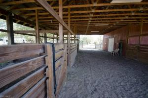 Crazy T Ranch Equestrian Paradise  in Lee, FL (20 of 37)