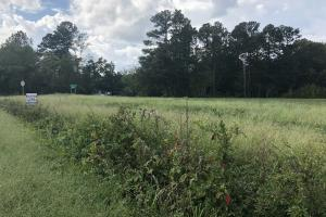 Stack-Medlin Road Corner Homesite Lot 1 in Union, NC (2 of 6)