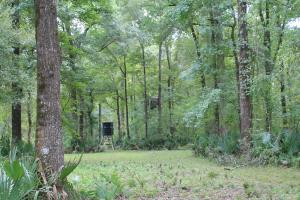 Concordia Parish Hunting Paradise - Concordia Parish LA