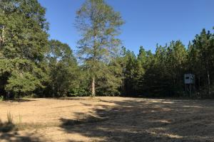 The Tibbie Timber Camp & Lake Investment in Washington, AL (39 of 47)