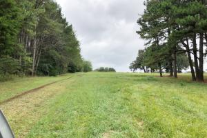 Cross Lane Home, Hunting, &  Agriculture Land in Colbert, AL (16 of 20)