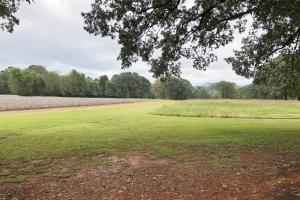 Cross Lane Home, Hunting, &  Agriculture Land in Colbert, AL (14 of 20)