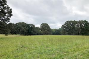 Cross Lane Home, Hunting, &  Agriculture Land - Colbert County AL