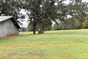 Cross Lane Home, Hunting, &  Agriculture Land in Colbert, AL (20 of 20)