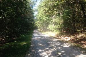 Budapest Road Homesite - Haralson County GA