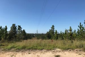 Sandwood Development Tract 6 in Lamar, MS (5 of 15)