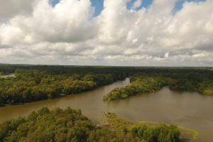 237 Recreation/Development Tract in Trinity, TX (14 of 23)