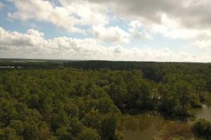 237 Recreation/Development Tract in Trinity, TX (17 of 23)