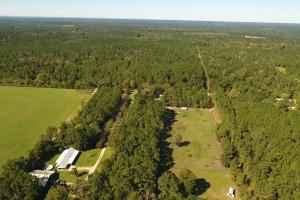 20 Acre Wooded Homesite/Ranch in Polk, TX (2 of 28)