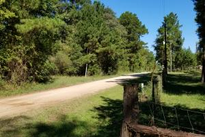 20 Acre Wooded Homesite/Ranch in Polk, TX (26 of 28)