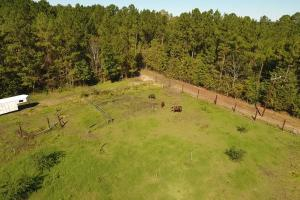 20 Acre Wooded Homesite/Ranch in Polk, TX (5 of 28)