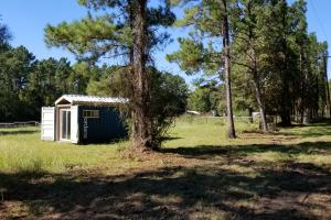 20 Acre Wooded Homesite/Ranch in Polk, TX (12 of 28)