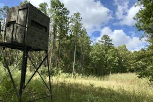 Turkeypen Creek & Camp Trophy Hunting Tract  - Marengo County AL
