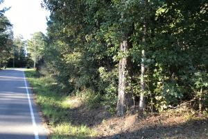 Oloh - Bellevue Residential Tract  in Lamar, MS (2 of 11)