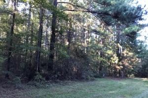 Oloh - Bellevue Residential Tract  in Lamar, MS (10 of 11)