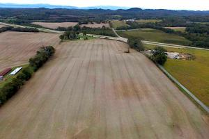 Highway 321 Farmland Investment Property in Loudon, TN (7 of 14)