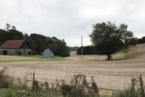 Highway 321 Farmland Investment Property in Loudon, TN (9 of 14)