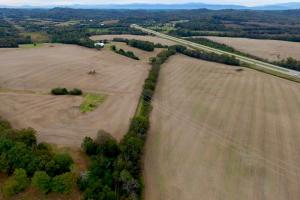 Highway 321 Farmland Investment Property in Loudon, TN (4 of 14)