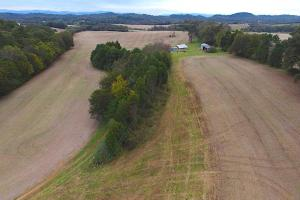 Highway 321 Farmland Investment Property in Loudon, TN (6 of 14)