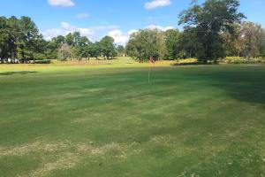 Crestwood Golf Club in Bamberg, SC (13 of 41)