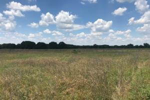 Great Recreational Property in kaufman County (2 of 5)