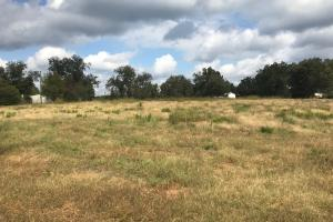 Old Greensboro Road Homesite - Tuscaloosa County AL