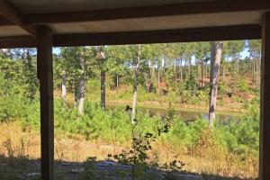 Turn-Key Hunting Land with Ponds  in Fairfield, SC (4 of 47)