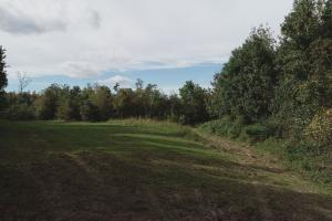 Food Plot near Amite River (10 of 12)