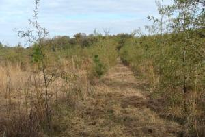120+/- Acres CRP & Hunting Property in Prairie, AR (33 of 39)