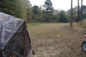 120+/- Acres CRP & Hunting Property in Prairie, AR (23 of 39)