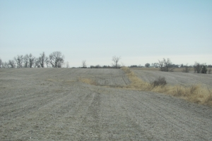 Northwest Missouri Crop & Hunting Farm - Nodaway County MO