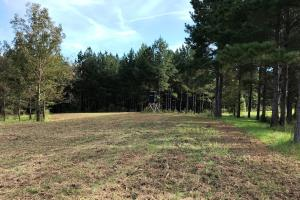 Food plot with shooting house (36 of 38)