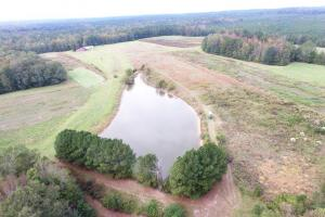 Kinterbish Creek Hunting, Timber, and Investment Tract - Sumter County AL