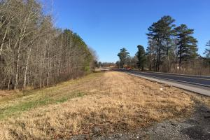 Walnut Grove Timber Recreational and Homesite Tract in Etowah, AL (2 of 8)
