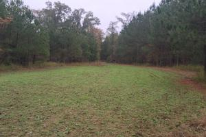 Little River Turnkey Hunting Property in Taliaferro, GA (16 of 35)