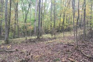Little River Turnkey Hunting Property in Taliaferro, GA (20 of 35)