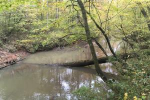 Little River Turnkey Hunting Property in Taliaferro, GA (24 of 35)