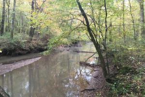 Little River Turnkey Hunting Property in Taliaferro, GA (25 of 35)