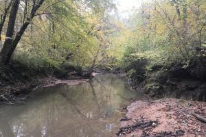 Little River Turnkey Hunting Property in Taliaferro, GA (26 of 35)