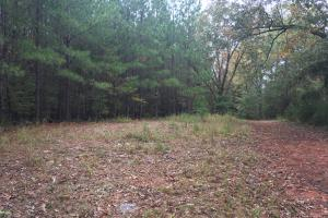 Little River Turnkey Hunting Property in Taliaferro, GA (30 of 35)