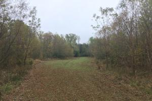 Little River Turnkey Hunting Property in Taliaferro, GA (18 of 35)