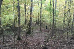 Little River Turnkey Hunting Property in Taliaferro, GA (27 of 35)