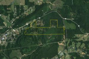 Hwy 132 Homesite Timber Recreational and Hunting Tract - Etowah County AL