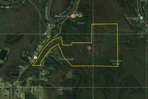 The Arthur Slough Tract in Livingston, LA (6 of 7)