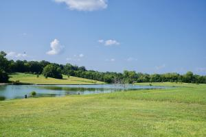 Fins - Feathers Farm in Sumter County, AL (10 of 26)