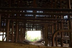 Inside the tobacco barn, Shelton Laurel Creek Timber and Homestead Land (19 of 22)