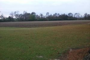 Warsaw Developable Land - Duplin County NC