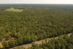 Large Wooded Ranchettes - 20 in Walker, TX (11 of 20)