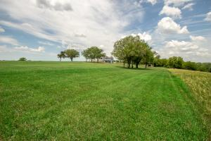 Burlingame Dream Home and Acreage in Osage, KS (54 of 73)