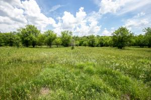 Burlingame Dream Home and Acreage in Osage, KS (56 of 73)